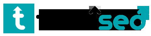 Total seo logo